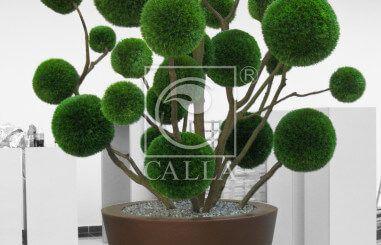 Sztuczne drzewa - bonsai