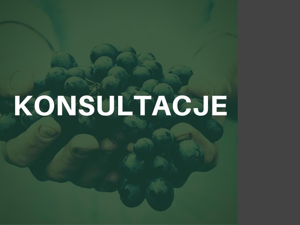 Konsultacje CALLA.pl