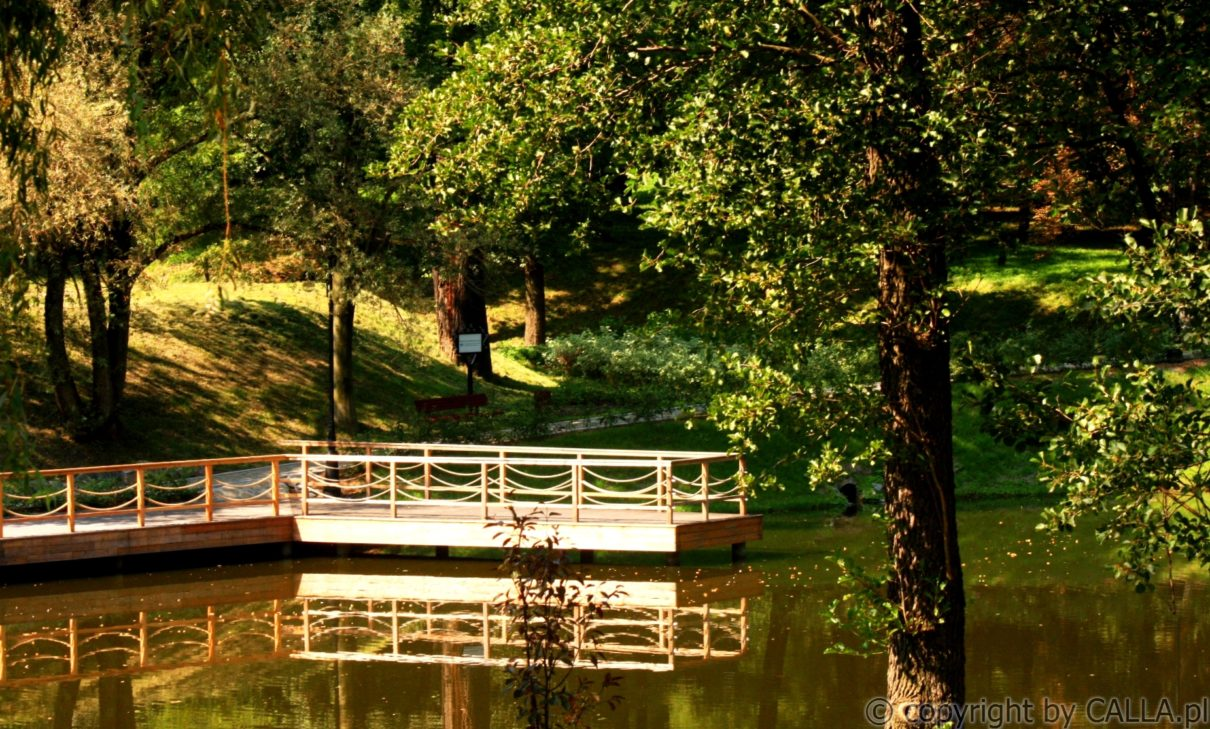 Park Ornontowice