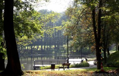 Park Ornontowice 1
