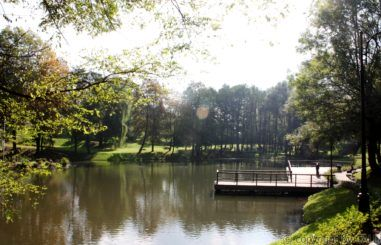 Park Ornontowice 2