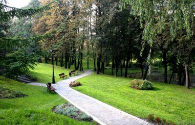 Park Ornontowice 4