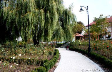 Park Ornontowice 6