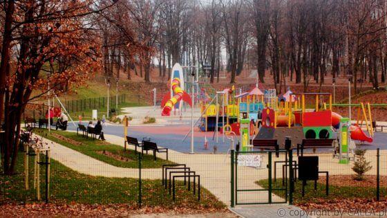 Park Warpie