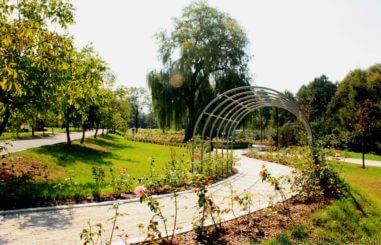 Park Ornontowice 9