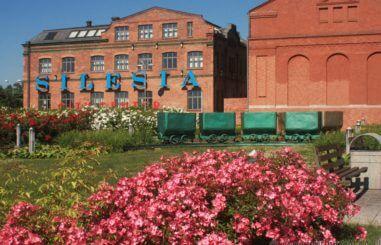 CALLA.pl Silesia City Center