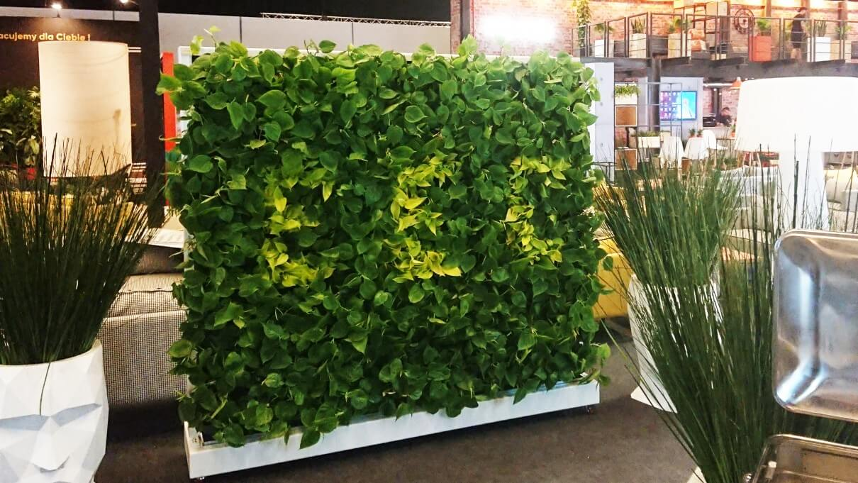 Green walls indor and outdoor, vertical farms