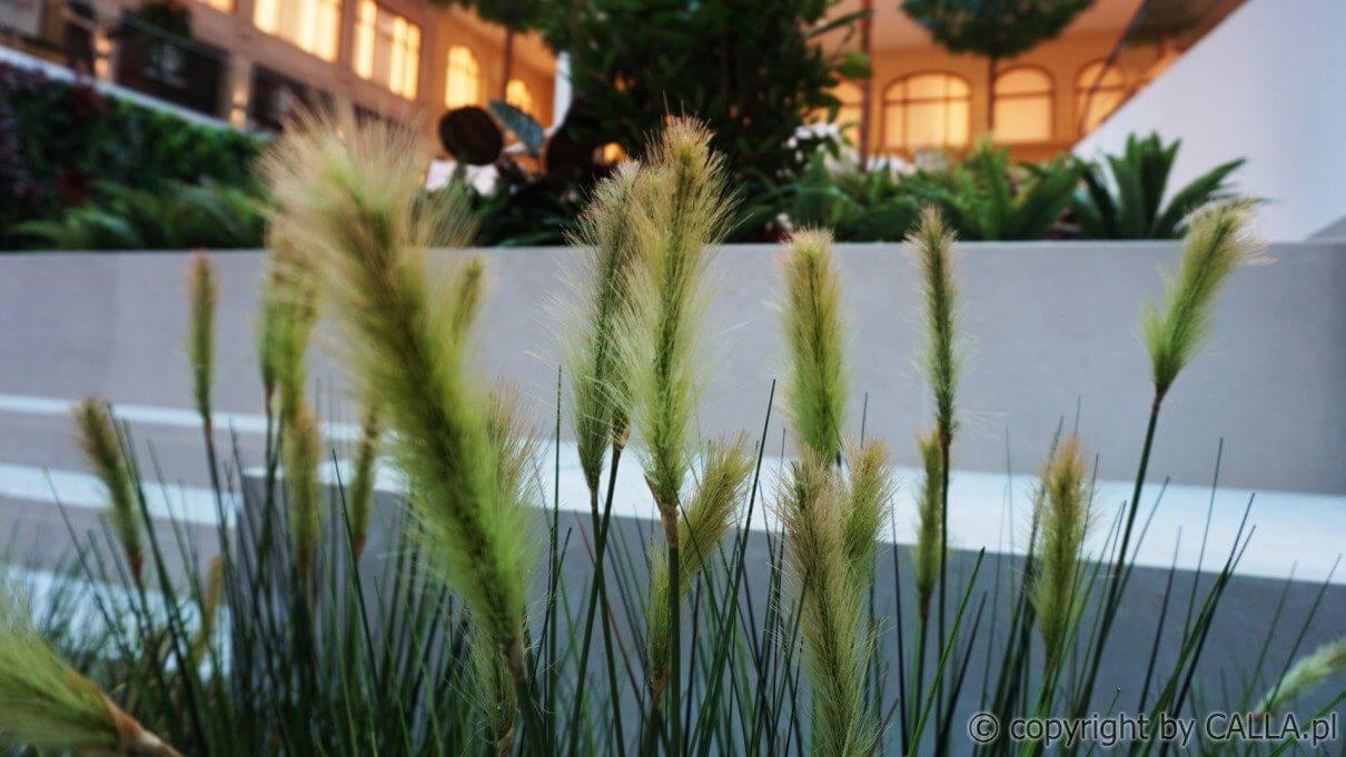 aranżacja zielenią sztuczną wraz z dostawa donic Prague The Style Outlets